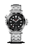 Omega Seamaster DIVER 300M CO-AXIAL MASTER CHRONOMETER 42MM Steel on steel - 210.30.42.20.01.001