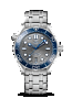 Omega Seamaster DIVER 300M CO-AXIAL MASTER CHRONOMETER 42 MM Steel on steel - 210.30.42.20.06.001