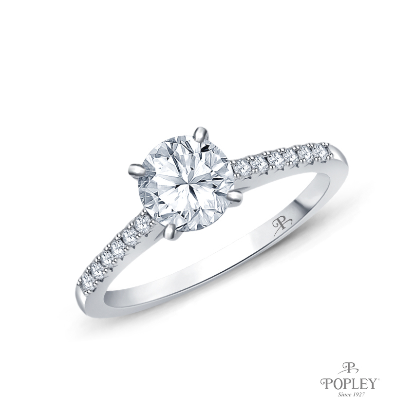 Cathedral Pave Diamond Engagement Ring Semi Mount in White Gold
