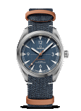 Omega Seamaster RAILMASTER CO-AXIAL MASTER CHRONOMETER 40MM Steel on nato strap - 220.12.40.20.03.001